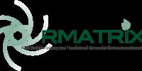 rmatrix2_logo_text_transparent
