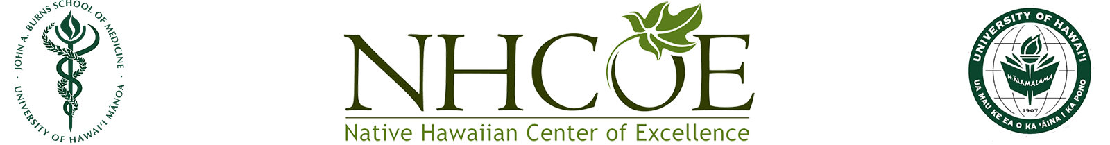 Native Hawaiian Health Center of Excellence